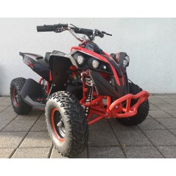 Mini ATV 1000 Watt Renegade 48V