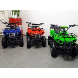 Mini ATV 800 Watt Offroad