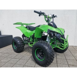 ATV 1000 Sport