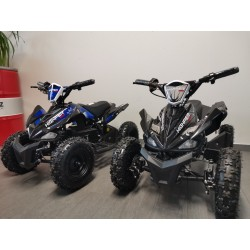 Mini ATV 800 MX